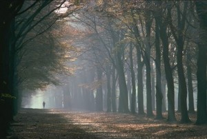 runner in fog scenery 300x202 Happy Trails To You.......